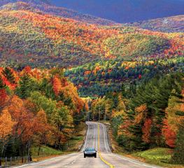 och_enl_image_0916_fall_driving_nopad